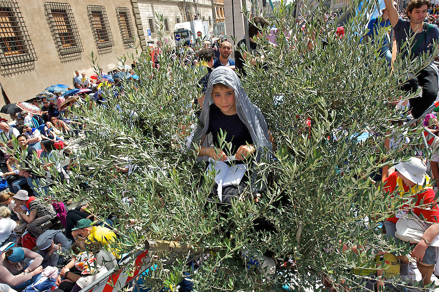 A teenager climbed a decorative olive tree put on the path to have a better view of the event