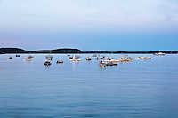 Bar Harbor Boats<br /> Bar Harbor, Maine