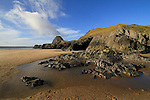 GOWER_WALL