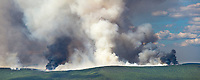 Panorama of columns of smoke rise from the boreal forest of spruce and hardwood trees in interior Alaska, as the Hastings forest fire north of Fairbanks increases its reach beyond 12,000 acres on June 7, 2011.