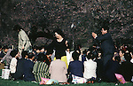 A couple dances in one of the many parties at the Cherry Blossom Festival held in Oyo Park near Hirosaki Castle in Aomori Prefecture in Northern Honshu, Japan. Over 1500 cherry trees come into bloom from late April to Early May. (Jim Bryant Photo).....