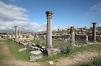 Atrium of the House of Ephebe, with entrances to public rooms off the main inner courtyard, Volubilis, Northern Morocco. Volubilis was founded in the 3rd century BC by the Phoenicians and was a Roman settlement from the 1st century AD. Volubilis was a thriving Roman olive growing town until 280 AD and was settled until the 11th century. The buildings were largely destroyed by an earthquake in the 18th century and have since been excavated and partly restored. Volubilis was listed as a UNESCO World Heritage Site in 1997. Picture by Manuel Cohen