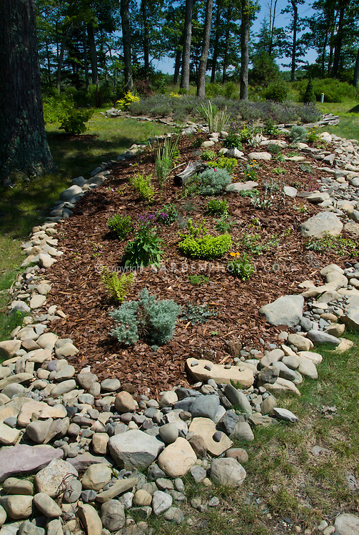 Landscaping A Sunny Hillside : Garden bed mulched on hillside slope bordered with native rocks and