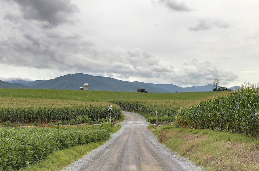 A lone road ends at a farm farm with the Blue Ridge Mountains behind in Greene County, VA. Photo/Andrew Shurtleff