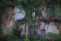 Detail of an abandoned house in South Carolina