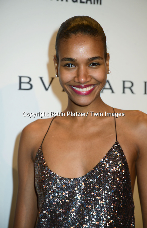 Arlenis Sosa attends the amfAR New York Gala on February 5, 2014 at Cipriani Wall Street in New York City.