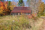 Autumn foliage along Bog Road in Campton, New Hampshire.