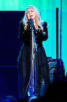 Fleetwood Mac In Concert MI