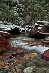 Avalanche creek with fresh snow against the red rock