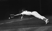 A's Carney Lansford dives for ball. (1988 photo by Ron Riesterer