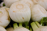 Closeup of fennel bulbs