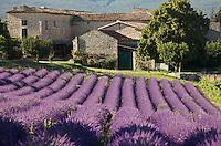 Escale gourmande en Drôme  provençale / Gourmet getaway in provencal Drôme