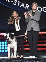NOV 22 Fox's Cause For Paws: An All-Star Dog Spectacular - Show