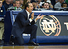 Dec. 7, 2013;  Head coach Mike Brey cheers his team on during the second half against Delaware. Photo by Barbara Johnston/University of Notre Dame