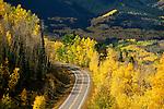 Bicycling on San Juan Skyway, San Juan National Forest, near Telluride, Colorado