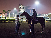 HALLANDALE BEACH, FL - JAN 27: California Chrome, with exercise rider Dihigi Gladney, groom Raul Rodriguez, and Assistant Trainer Alan Sherman wait on the track before a final workout for the Pegasus World Cup at Gulfstream Park Race Course on January 27, 2017 in Hallandale Beach, Florida. (Photo by Scott Serio/Eclipse Sportswire/Getty Images)