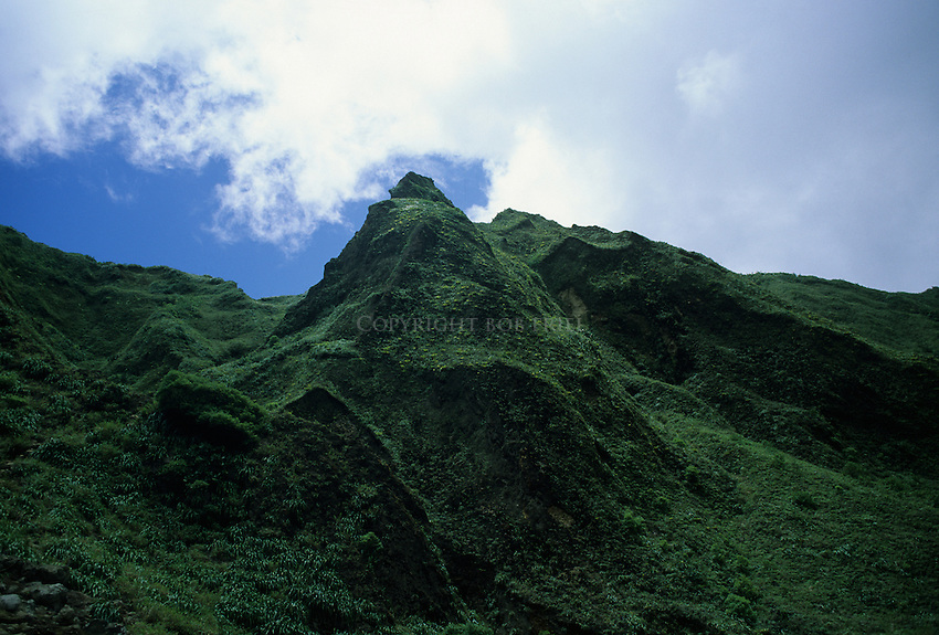 Hike through Morne Trois Piton National Park to the Boiling Lake, Dominica