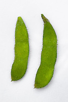 Soybean Legumes, two pods against white background soy beans
