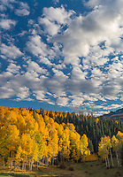 Uncompahgre National Forest, Colorado:Cloud patterns above fall colored hillsides, San Juan Mountains