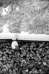 Fire wood for keeping warm in Morzine France