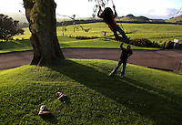 """Kamehana Tachera, 11, pushes her sister, Nahe, 9, on a swing at Kahua Ranch in North Kohala, Hawaii, where their father, Wayne, is employed as a cowboy.  The girls' great-grandfather, grandfather and father are or were all cowboys and they live in """"cowboy housing"""" on the ranch.  The girls learned to ride horses as toddlers and have grown up with the ranch as their playground. """"It's beautiful up here.  Not many children get to see this lifestyle,"""" says Kamehana."""