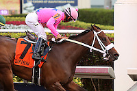 HALLANDALE BEACH, FL - MARCH 04:   #7 Miss Sky Warrior wth jockey Paco Lopez on board, wins the Davona Dale Stakes (Grade II) at Gulfstream Park on March 04, 2017 in Hallandale Beach, Florida. (Photo by Liz Lamont/Eclipse Sportswire/Getty Images)