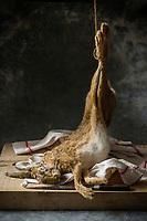 France, Loir-et-Cher (41), Sologne, Lièvre d'Europe, Lepus europaeus - Stylisme : Valérie LHOMME     // France, Loir et Cher, Sologne, European Hare, Lepus europaeus