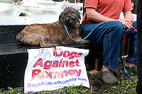 """TAMPA, FL - August 26, 2012 - Albert at the """"Dogs Against Romney"""" protest at Lykes Gaslight Park."""