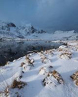 Snow covered grass on shore of Flakstadpollen, Kilan, Flakstadøy, Lofoten Islands, Norway