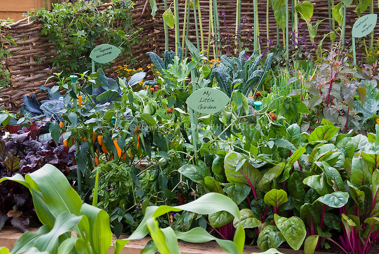 Inspiring Intermixed Vegetable Garden Lots Of Types Of Plants  Plant  With Gorgeous Small Vegetable Garden With Signs That Say My Little Garden And  Sunflowers And With Extraordinary Water Features Garden Also Manor House Gardens In Addition Garden Shredders For Sale Uk And Wooden Garden Arch Designs As Well As Victoria Garden Centre Additionally Kesington Roof Gardens From Gardenphotoscomphotosheltercom With   Gorgeous Intermixed Vegetable Garden Lots Of Types Of Plants  Plant  With Extraordinary Small Vegetable Garden With Signs That Say My Little Garden And  Sunflowers And And Inspiring Water Features Garden Also Manor House Gardens In Addition Garden Shredders For Sale Uk From Gardenphotoscomphotosheltercom