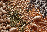 Semi. Seed