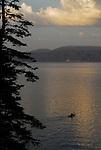 Kayaking on Lake Tahoe at sunset