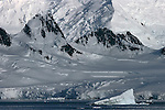 Enormous icebergs are dwarfed by the vertical sweep of the mountains that rise directly out of the sea