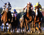 The Breeder's Cup. Santa Anita, CA. copyright Jim Mendenhall Photos 1987