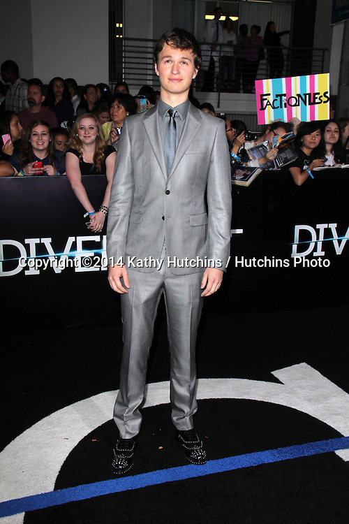 """LOS ANGELES - MAR 18:  Ansel Elgort at the """"Divergent"""" Los Angeles Premiere at Bruin Theater on March 18, 2014 in Westwood, CA"""