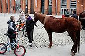 "Dublin, Ireland, January 2, 2011:.Boy and his horse during the Smithfield horse market in central Dublin. This traditional market has now become a place for the young boys from poor northern neighborhoods of the city trade the horses, selling them for as little as 80 Euros, mistreating them and roaming on them up and down the slippery square..Since the beginning of crisis, between 10 and 20 thousand horses have become homeless or went in the hands of the youths in urban areas. Lots of Irish people who used to buy horses for fun during the boom years of ""Celtic Tiger"", now are abandoning them faced with expenditure of 35 Euro a week to properly maintain a horse. This animal previously worth 2000 Euro now can be purchased for as little as 80 Euro. New owners keep their horses in city greens, city ruins, or their house gardens, in very bad conditions. Most do not get much food, many are starving, dying, being mistreated..(Photo by Piotr Malecki / Napo Images)..Dublin, Irlandia, 2/01/2011:.Chlopak jego kon podczas comiesiecznego targu koni w Smithfield w centrum Dublina..Ten tradycyjny targ  stal sie miejscem gdzie mlodzi chlopcy z biednych polnocnych dzielnic miasta handluja konmi po 80 euro, zle je traktujac i szalejac na nich po calym placu. .Od poczatku kryzysu od 10 do 20 tysiecy koni zostalo wyrzuconych na ulice przez wlascicieli nie chcacych placic okolo 35 Euro/tydzien za ich utrzymanie. Wpadaja one czesto w rece mlodziezy z ubogich dzielnic miasta, ktora handluje nimi, bije, glodzi, trzyma w skrajnie trudnych warunkach, w przydomowych ogrodkach lub ruinach budynkow i szaleje na nich po miescie. Kon, ktory byl wart 2000 Euro teraz moze byc kupiony za 80. .Fot: Piotr Malecki / Napo Images."
