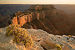 Rising to over 7,000 feet, Wotan's Throne juts out of the Colorado Plateau and overlooks the Grand Canyon, as seen from the North Rim of the Grand Canyon National Park, Arizona at sunset.