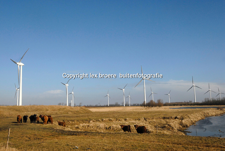 Windmolenparken langs de Duitse Dollard