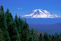 Mt. Adams from Monitor Ridge, Mt. St. Helens, Mt. St. Helens National Volcanic Monument, Washington, US, July 2004