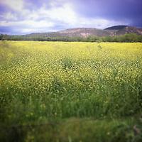 instagram crearive photos
