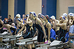 BIRMINGHAM, AL - MARCH 11: University of Bridgeport swimmers cheer on their fellow competitors in the Women's 400 Yard Freestyle Relay during the Division II Men's and Women's Swimming & Diving Championship held at the Birmingham CrossPlex on March 11, 2017 in Birmingham, Alabama. (Photo by Matt Marriott/NCAA Photos via Getty Images)