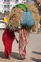 Indian women walking in the street, one carrying straw bale on head, in Nandi near Varanasi, Benares, Northern India