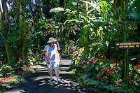 Tourists walk through the Anthurium Corner at Hawai'i Tropical Botanical Gardens, Onomea, Big Island of Hawaiʻi.