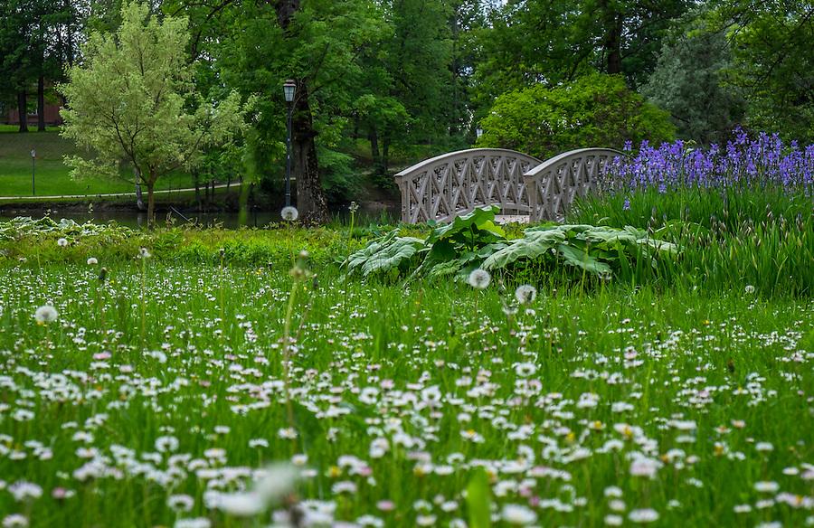 LATVIA, CESIS - CIRCA JUNE 2014: View of Cesis Castle Park in Latvia