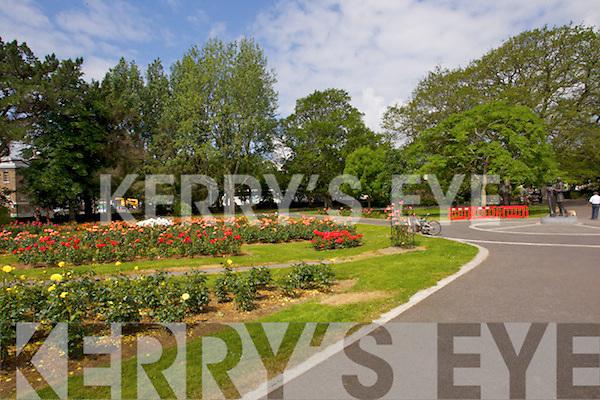 29 Town Park Kerry 39 S Eye Photo Sales