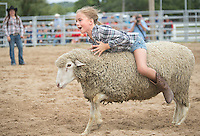 Attending her first rodeo, Camilla Johnson, 7, of River Falls takes a ride on a sheep Saturday, September 14, 2013, during the mutton busting portion of the Falcon Frontier Days Rodeo. Johnson's was the last ride out of all the children participating, and the longest to stay on.<br /> Kathy M Helgeson/UWRF Communications