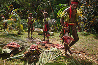 Chiefs dividing pig meat at Nalawan ceremony near village of Labo, South West Bay, Malekula.