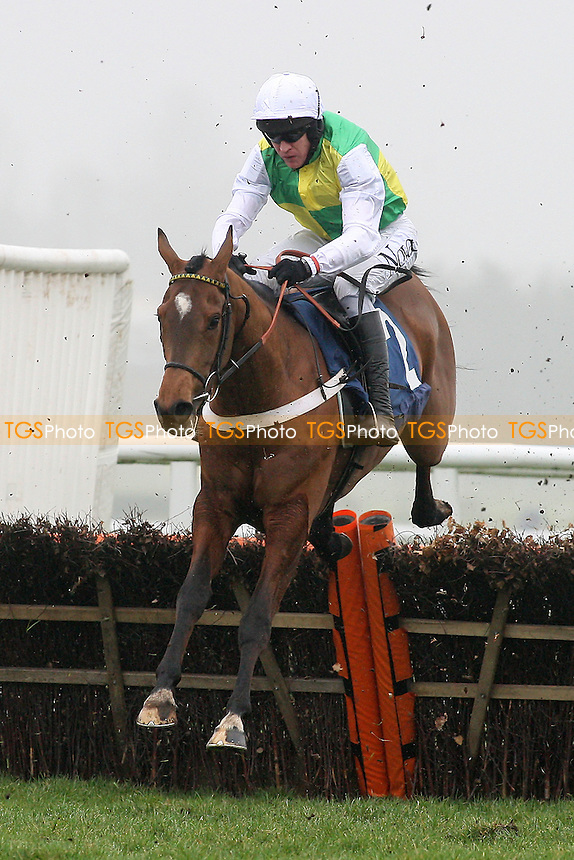 Lyvius ridden by Barry Geraghty jumps the last in the the Floor V Davis HL1979 Juvenile Hurdle - Horse Racing at Newbury Racecourse, Berkshire - 02/03/12 - MANDATORY CREDIT: Gavin Ellis/TGSPHOTO - Self billing applies where appropriate - 0845 094 6026 - contact@tgsphoto.co.uk - NO UNPAID USE.