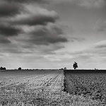 The Dividing Line, Suffolk, 2010