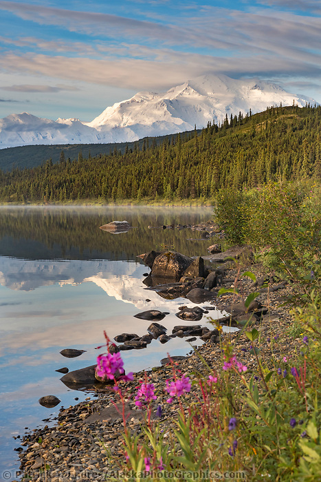 Mt. Denali, North America's tallest Peak. Denali National Park, Alaska.